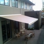 Folding Arm Awning (Extended)